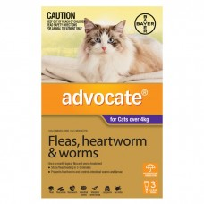 Advocate Flea and Worm Treatment For Cats Over 4kg