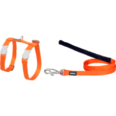 Red Dingo Harness & Lead Orange