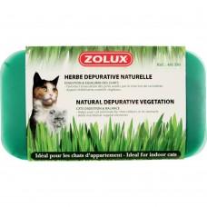 Zolux Premium Cat Grass 249g