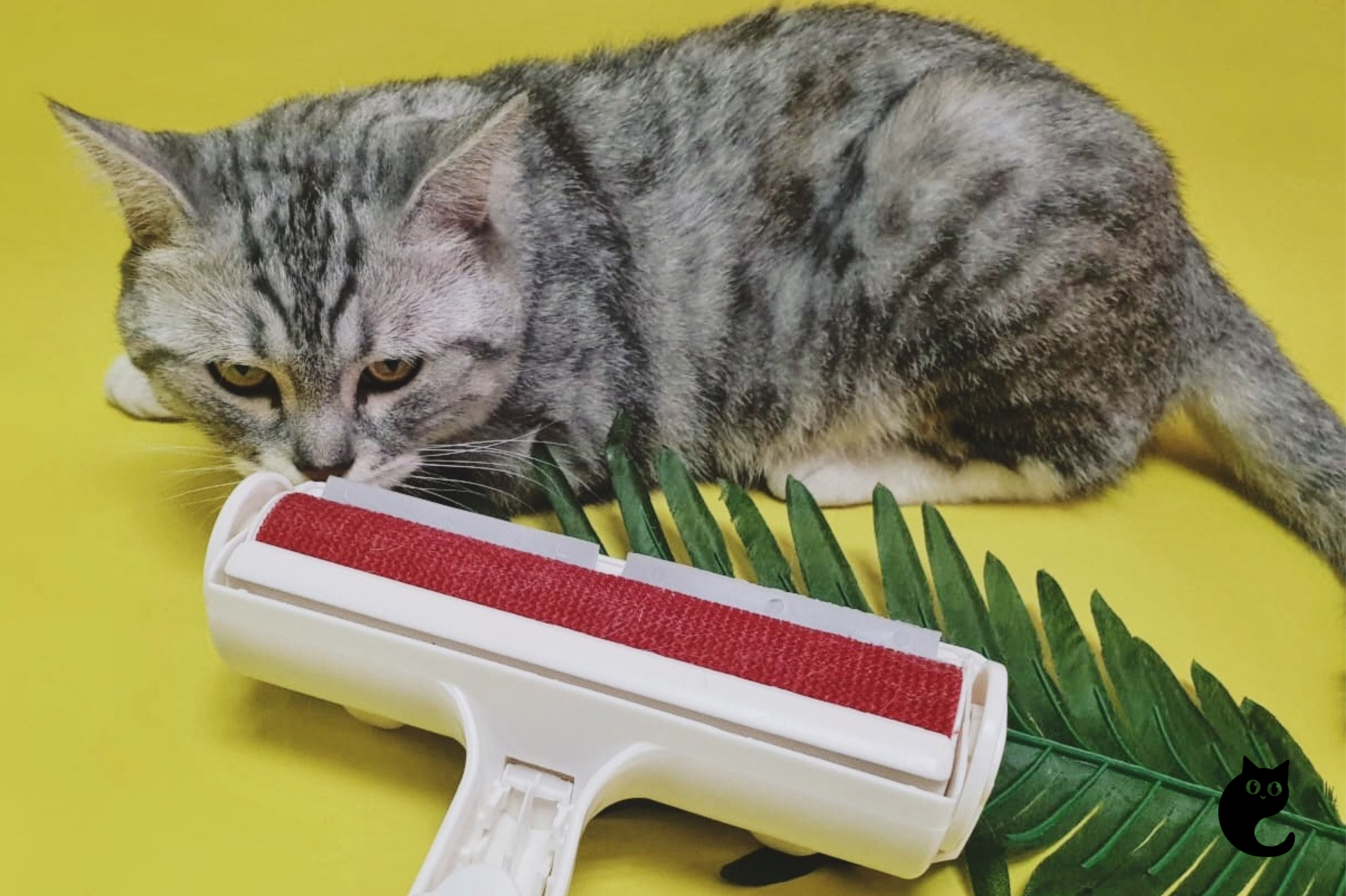 A Dual-Surface Pet Fur Remover That Cleans In A Breeze