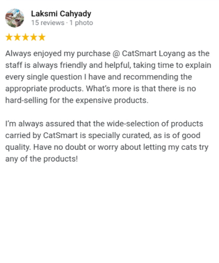 google-review-catsmart