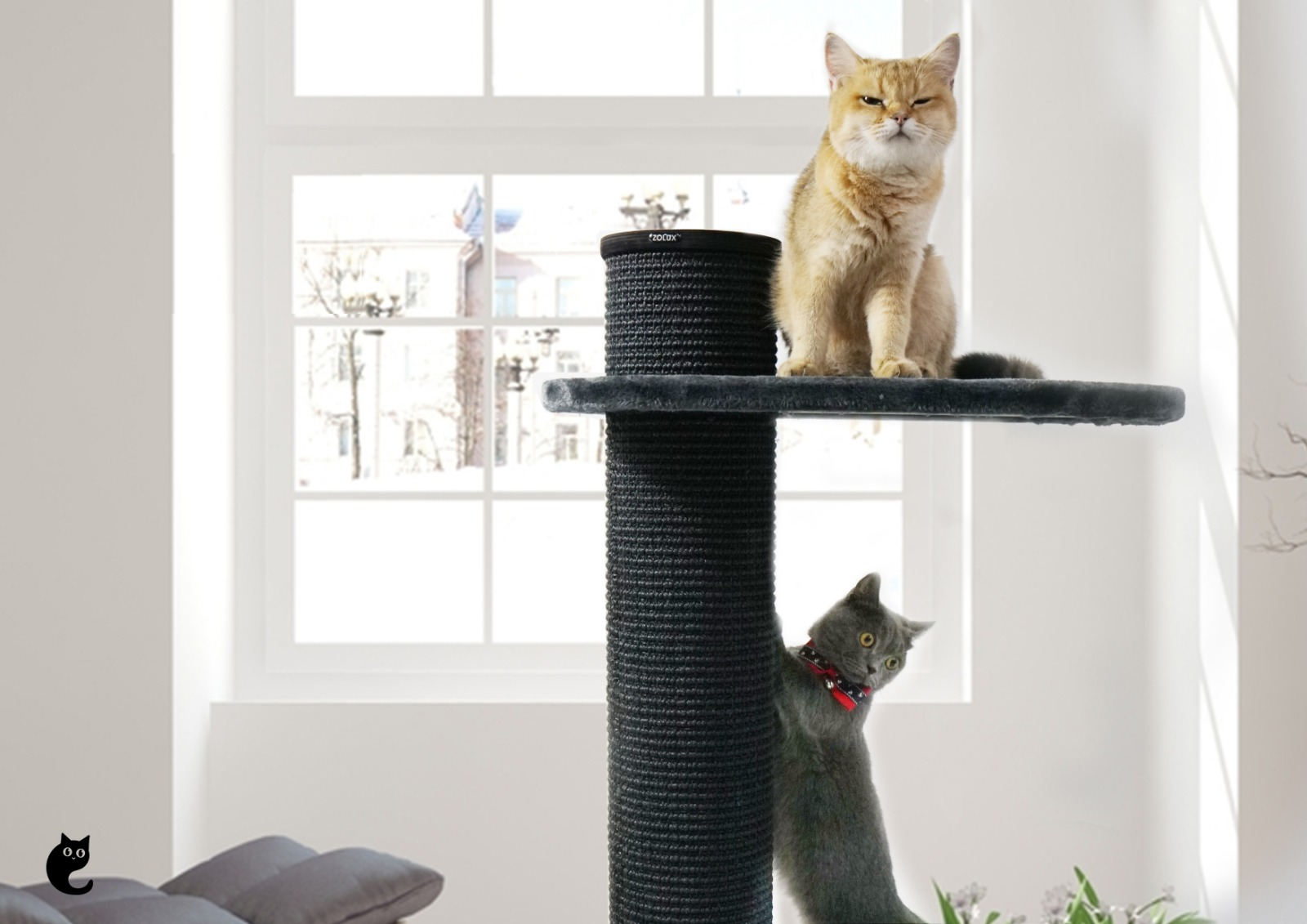 Why are cat trees essential?