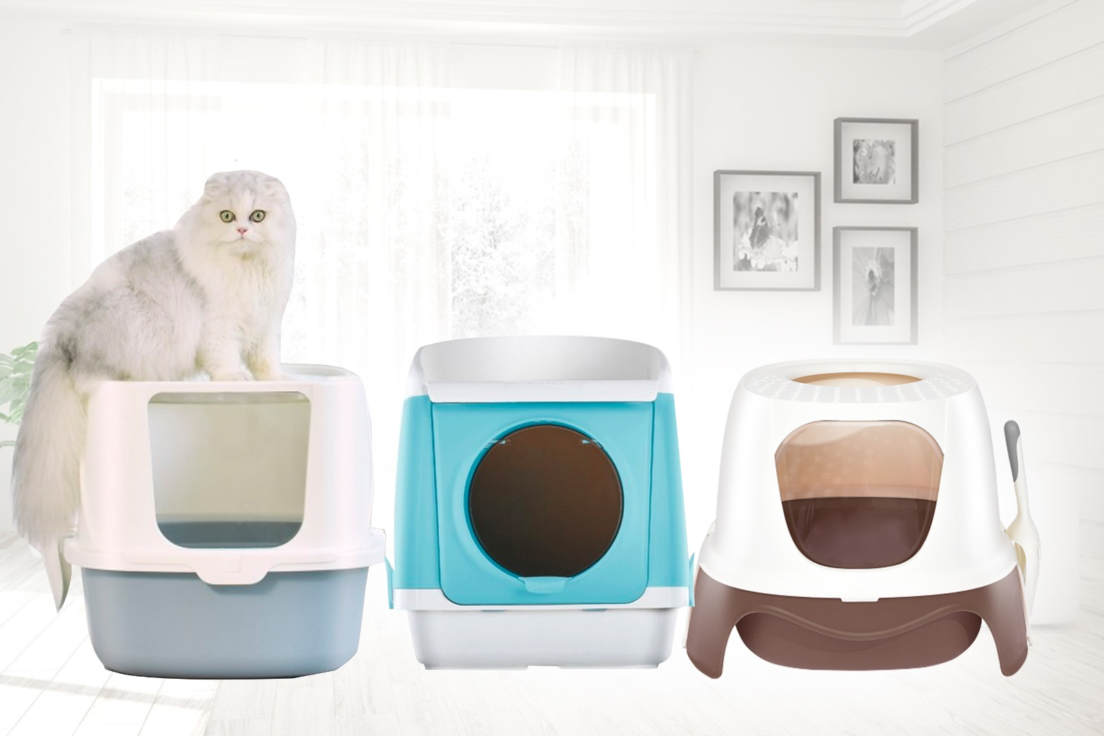 Get Your Scoop On the Best Fully Enclosed Feline Litter Box