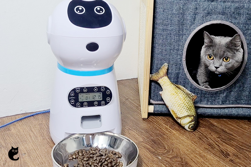 Believe Us - You Should Get This Rubeku Smart Automatic Pet Feeder